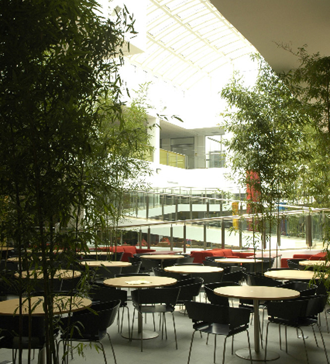 Western-Academy-of-Beijing-HS-7-Cafe-Seating