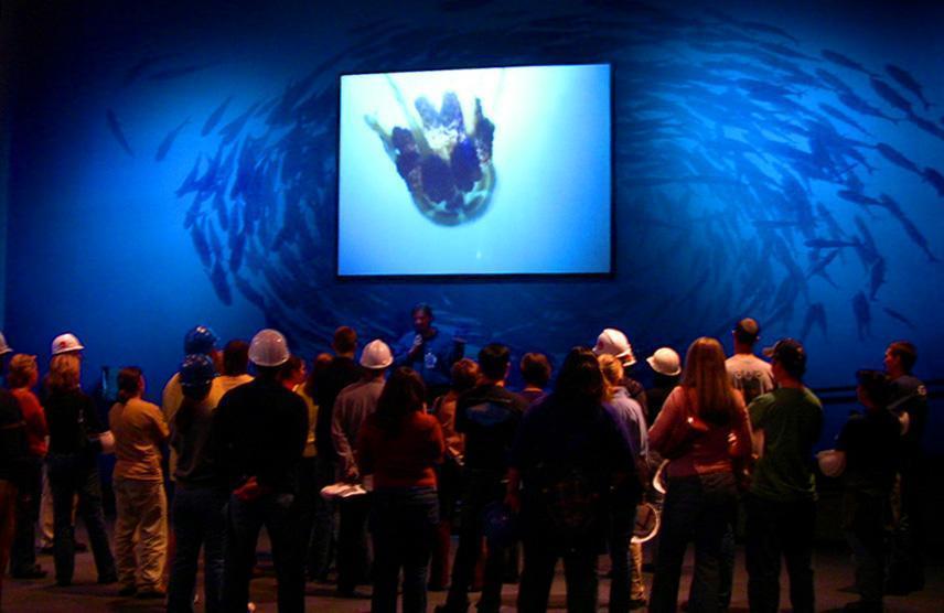 Georgia Aquarium 4D Th...